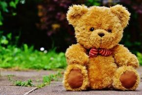 teddy-1444639_1920