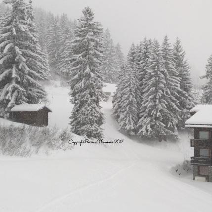 paysage-neige