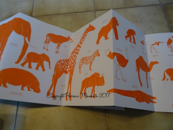affiche verso deplidoc animaux afrique