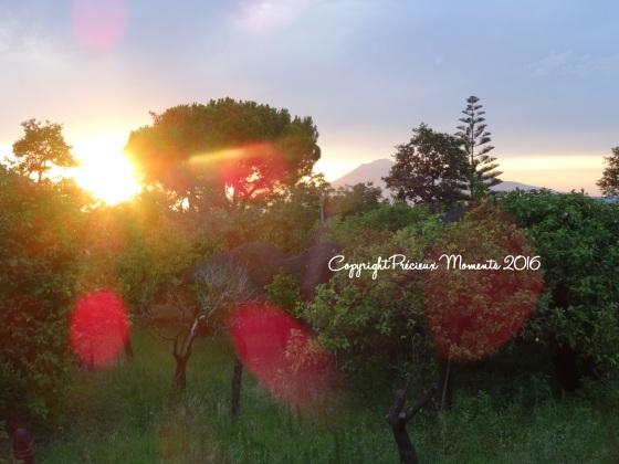 corbara-coucher-soleil