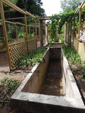 jardin pompei 2