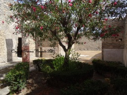 jardin pompei