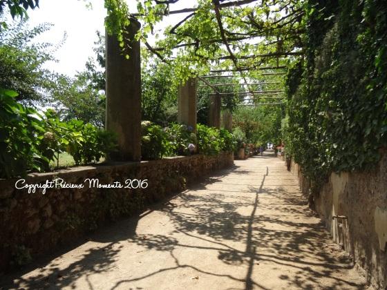 jardin villa cimbrone