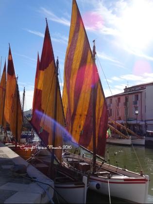 bateau cesenatico