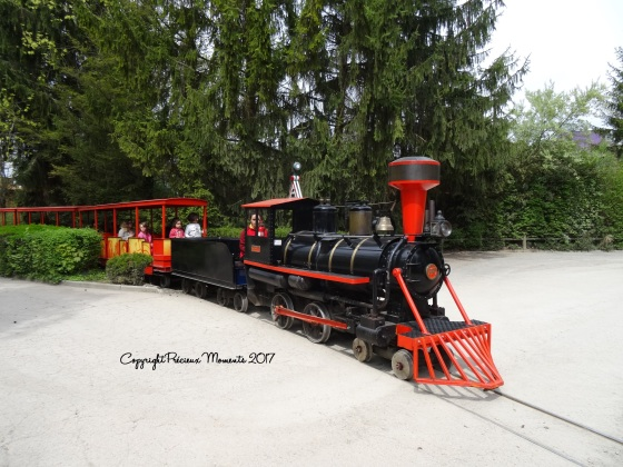 walibi train