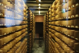 rayon cave fromage gruyeres