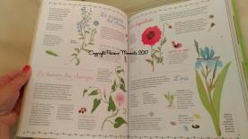 super livre de la nature herbier