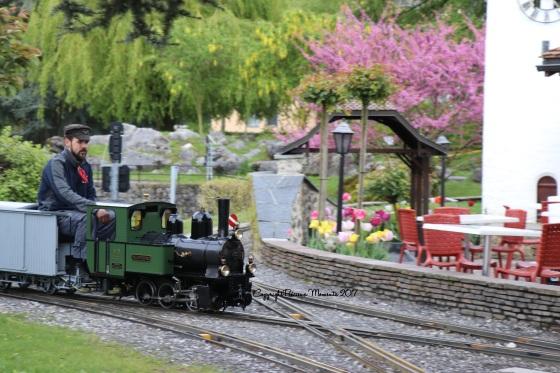 train locomotive swiss vapeur parc