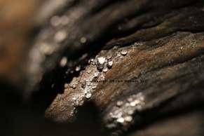 goutte d eau grotte blarney