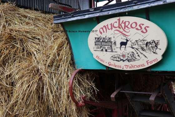 muckross farm charette
