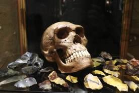 crane squelette prehistoire neolithique irlande silex
