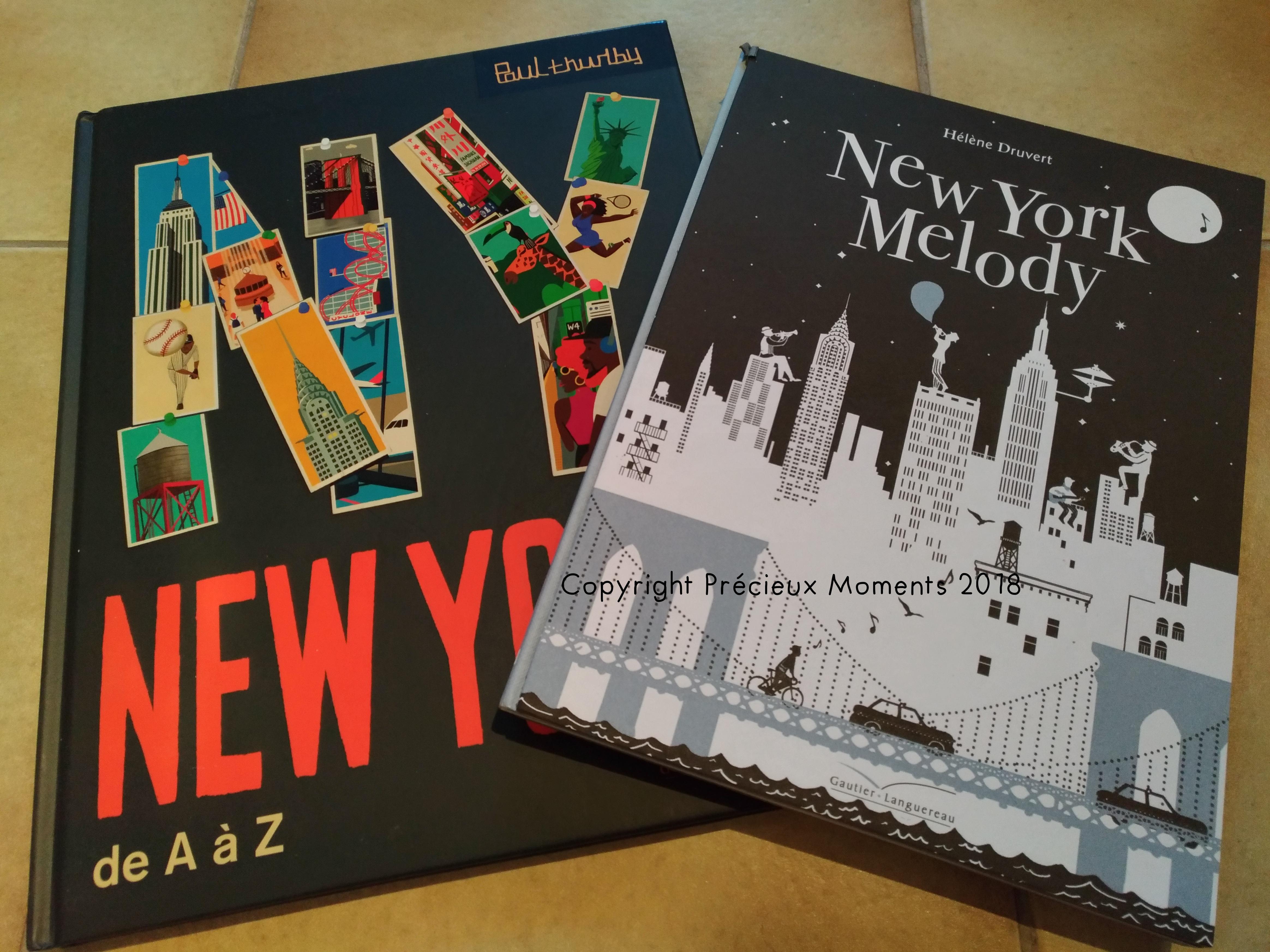 Dans Ma Bibliotheque 114 De Jolis Livres Pour Enfants Sur New York Precieux Moments