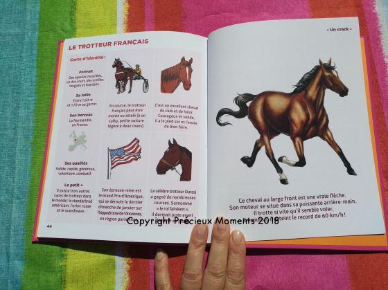 simplissime chevaux