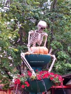 Walibi Halloween decor squelette