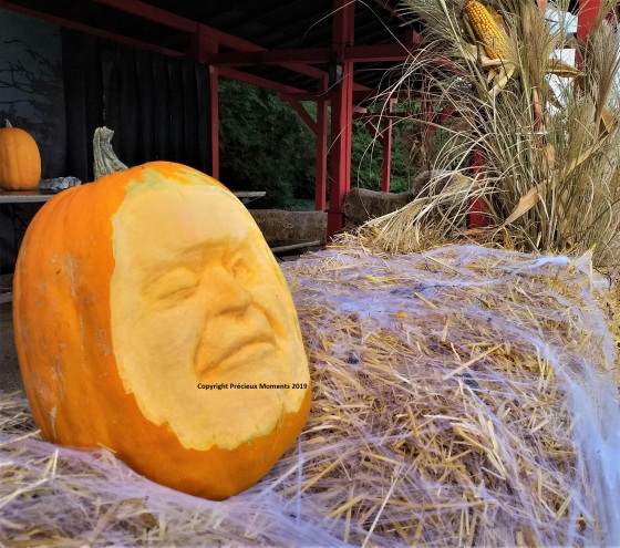 Walibi Halloween sculpture citrouille