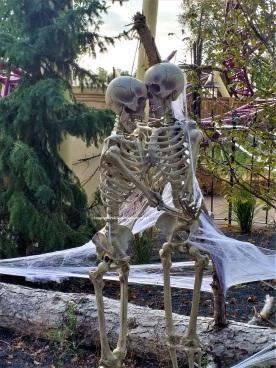 Walibi Halloween squelettes